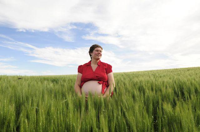 Summer Due Date, Winter Wheat